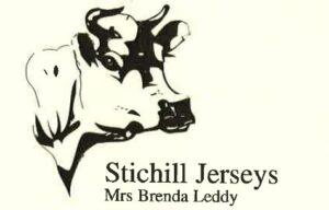 Stichill Jerseys