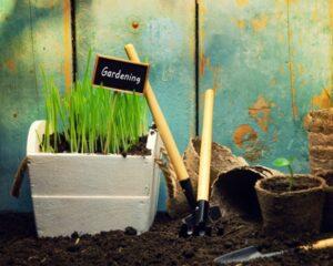 Gardening in Spring_600